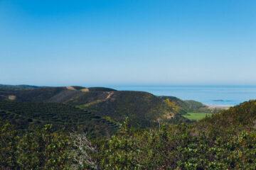 Blick über die grünen Hügel,Küste und Meer
