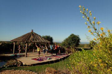 Yogaübungen am Holz-Pavillion