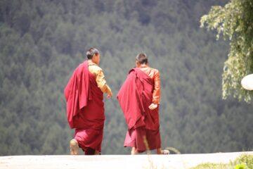 Mönche in roten Gewändern laufen nebeneinander her