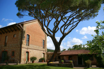 Haus mit altem verästelten Baum davor