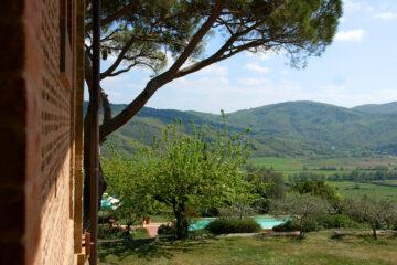 Baum und Blick auf den Pool und das Tal