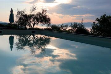 Baumspiegelung im Wasser des Pools