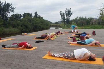 Gruppe übt auf Steg auf Yogamatten