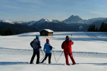 Schneeschuhwanderer blicken auf die Gipfel