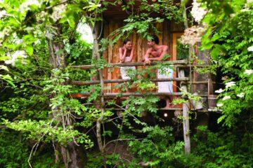 Pärchen auf dem Balkon unter grünen Zweigen