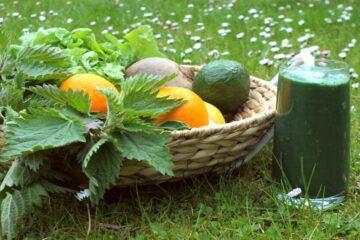 Früchte und Smoothie