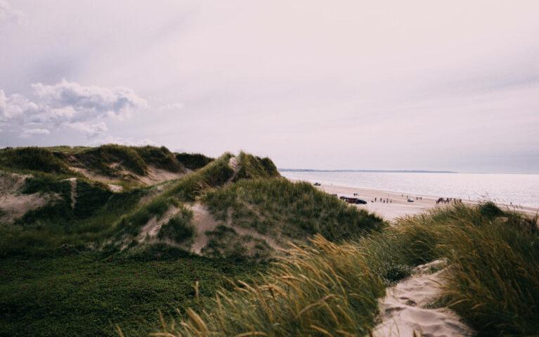 Dänemark – Auszeit zwischen Meer, Strand und Heide