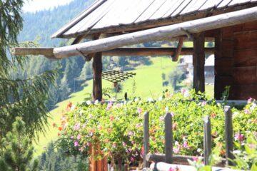 Terrasse umrankt von Blumenkästen