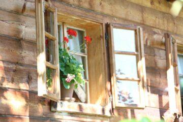 Holzfenster mit roten Geranien im Blumentopf auf Sims
