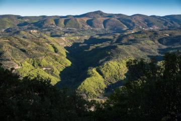 Grüne Hügelkette