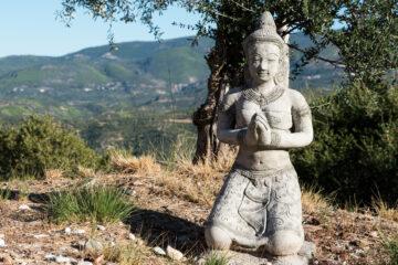 Betender, kniender Buddha auf Gras