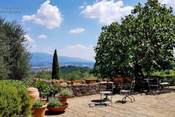 Terrasse mit Blick über Hügel und Tal