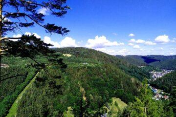 Links ein Baum und rechts der Blick ins Tal mit Häusern