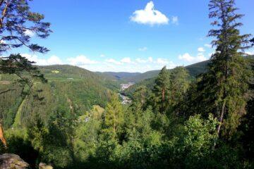 Aus dem Wald öffnet sich der Blick ins Tal mit Häusern