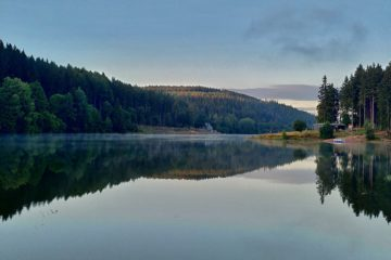 See in dessen Oberfläche sich der Waldhügel spiegelt