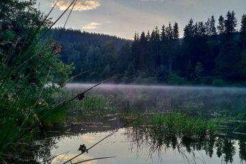 See mit Nebelschleiern über Wasseroberfläche