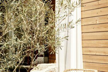 Terrasse am Olivenbaum