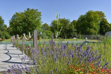 Lavendelwiese am Teich und Steg