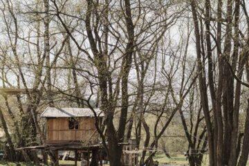 Holzhaus mitten in den Bäumen am Fluss