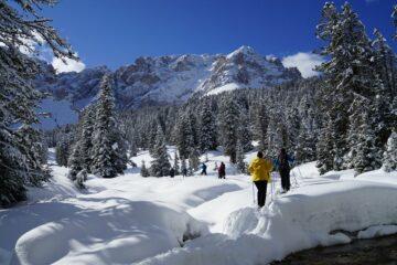 Gruppe wandert durch beschneiten Wald
