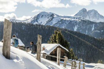 Kleine Berghütte aus Holz mit Bergmassiv
