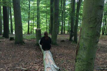 Frau sitzt auf Baumstamm