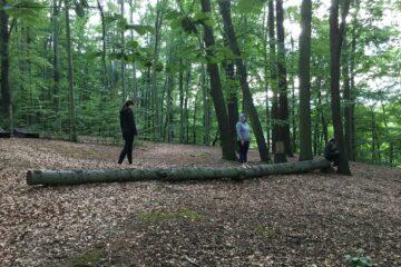 Menschen balancieren auf Baumstamm