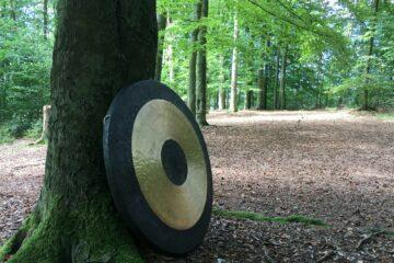Gong Schale am Baum
