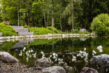 Teich mit Blumen und Holztreppe