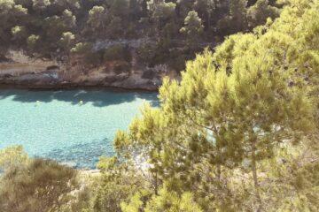 Grüne Bäume an Hang zur Bucht