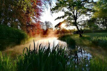 Morgenstimmung über Wasser mit Dampf